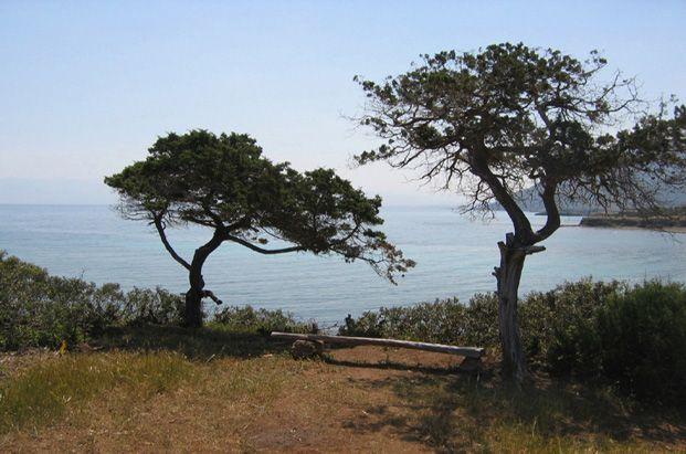 Guide de la randonnée et du trekking à Chypre
