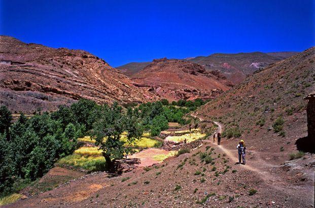 Guide de la randonnée et du trekking au Maroc