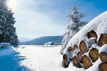 Rando blanche en Forêt-Noire