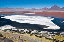 Total Bolivie