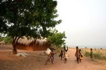 Ghana méconnu, entre cacao et savane