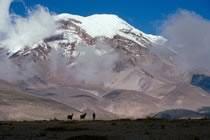 Grande Route Inca - Etape 1