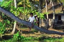 Epices et cocotiers, trésors du Kerala