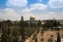 Israël - Palestine entre passé et présent