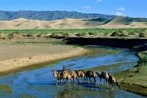 Du désert de Gobi aux steppes du Khangaï