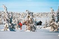 Lacs gelés et paradis nordique