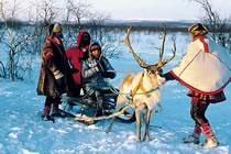 Cocktail d'activités en Laponie