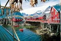 Lumières boréales, de Tromsø aux îles Lofoten