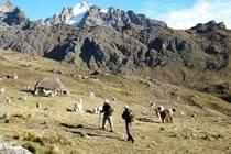 La vallée de Lares, trek sur les chemins incas