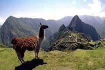 Petits Incas et temple du Soleil