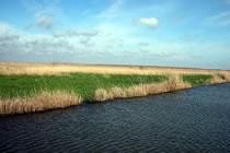 Contrées sauvages du delta du Danube