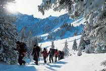 A l'ombre des cimes de l'Oberland