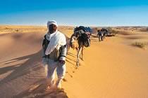A la conquête du désert