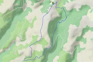 Trace gps de l'itinéraire