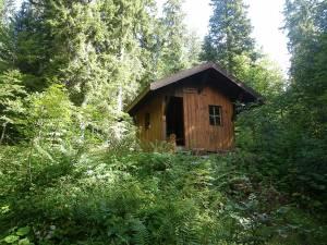 Traversée de la forêt du Risoux (Doubs - Suisse - Jura) 50 km