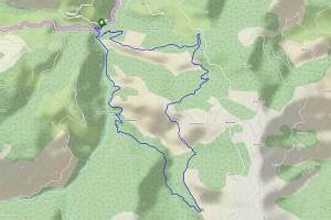 Randonnée à la passerelle d'Holzarté en boucle depuis Logibar