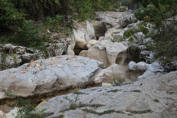 Randonnée du Pied du Grand Colombier
